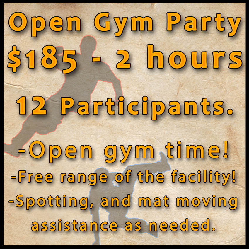 Open Gym birthday Party Website square